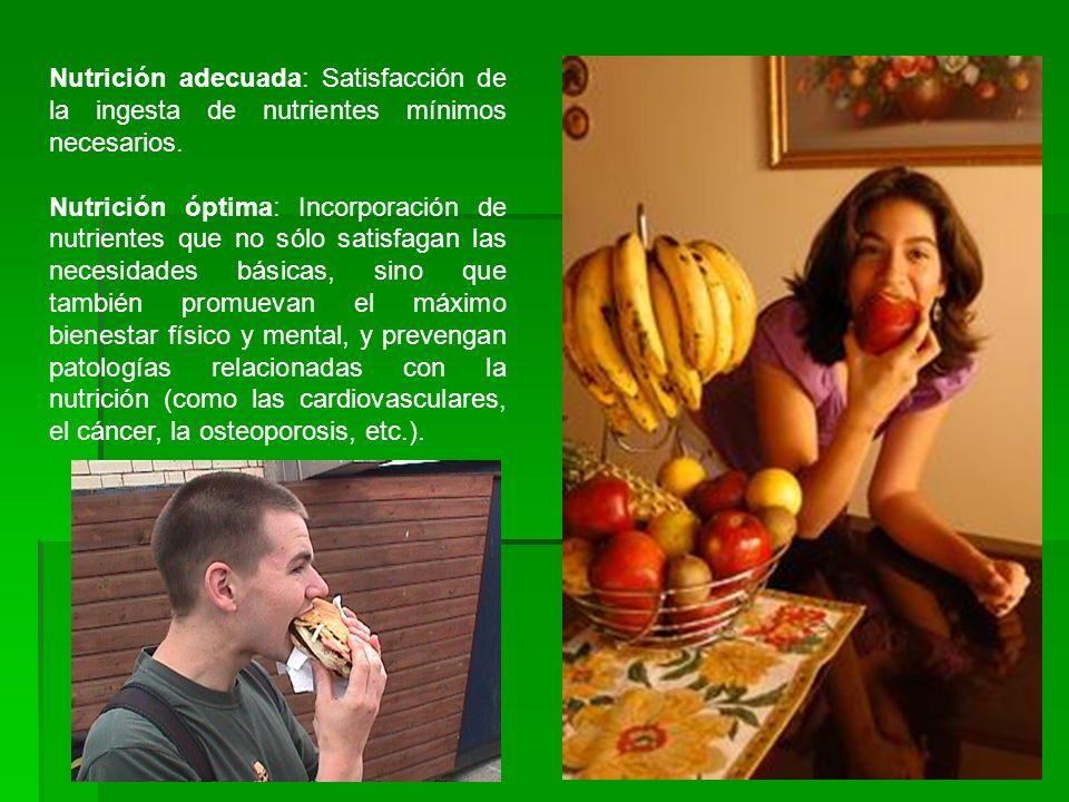 Nutrición adecuada: Satisfacción de la ingesta de nutrientes mínimos necesarios. Nutrición óptima: Incorporación de nutrientes que no sólo satisfagan