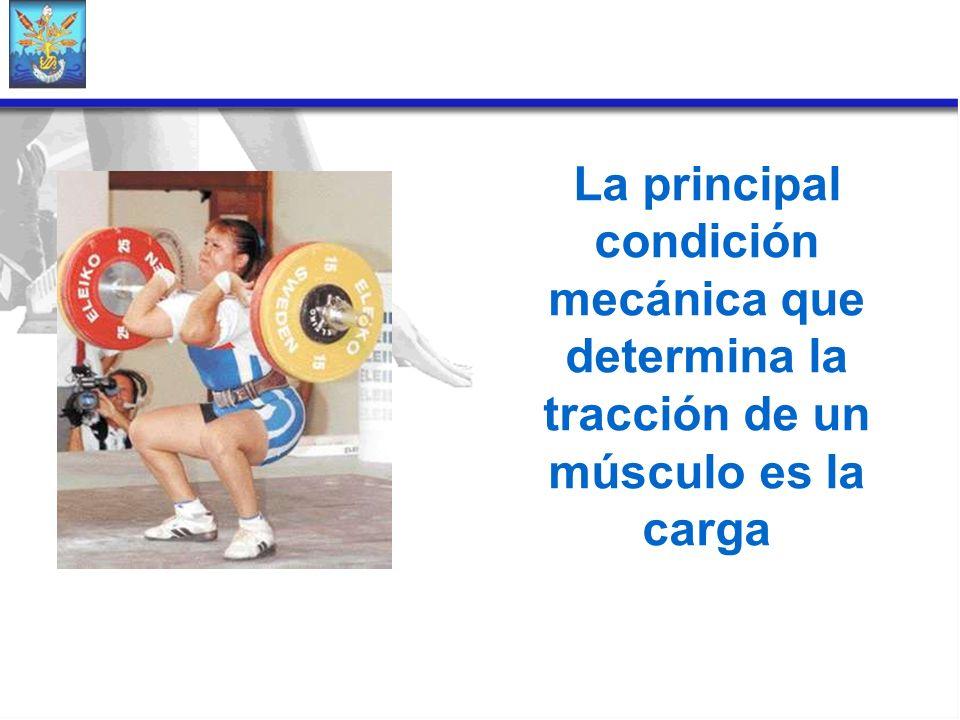 La principal condición mecánica que determina la tracción de un músculo es la carga