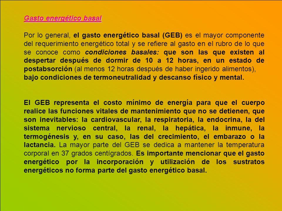 Gasto energético basal Por lo general, el gasto energético basal (GEB) es el mayor componente del requerimiento energético total y se refiere al gasto