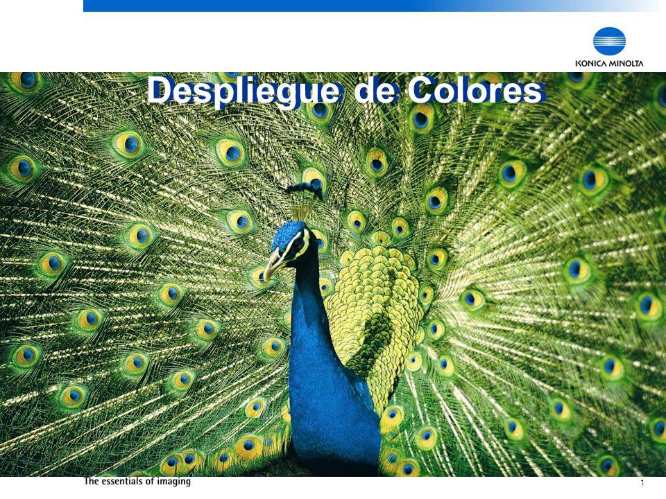 1 Despliegue de Colores