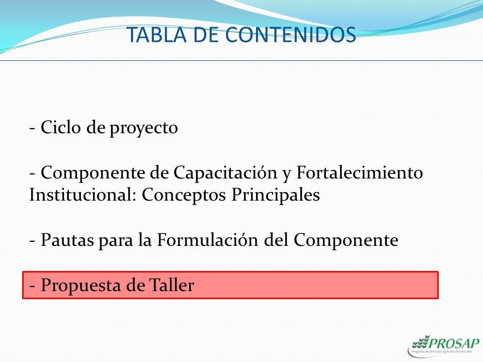 - Ciclo de proyecto - Componente de Capacitación y Fortalecimiento Institucional: Conceptos Principales - Pautas para la Formulación del Componente -