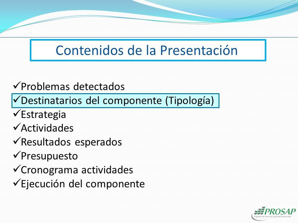 Contenidos de la Presentación Problemas detectados Destinatarios del componente (Tipología) Estrategia Actividades Resultados esperados Presupuesto Cr