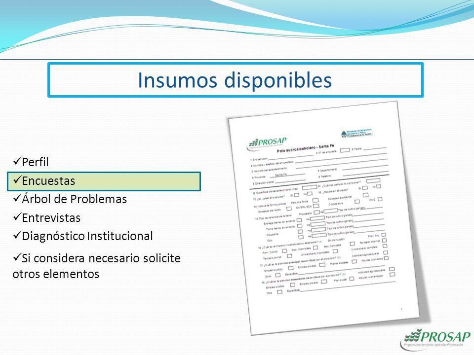 Insumos disponibles Diagnóstico Institucional Encuestas Árbol de Problemas Perfil Si considera necesario solicite otros elementos Entrevistas