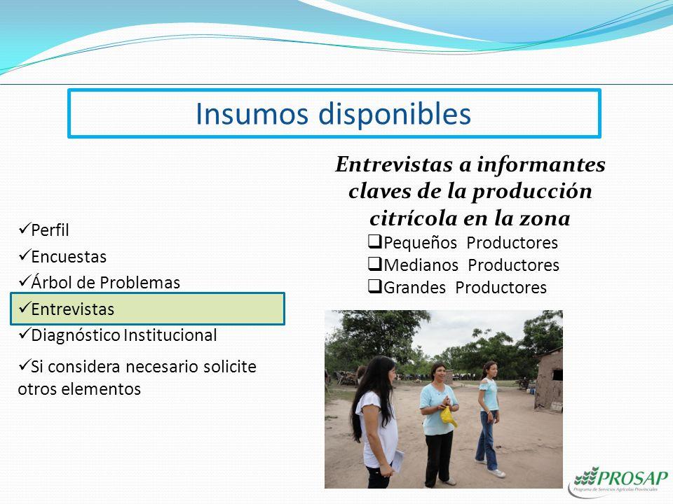 Diagnóstico Institucional Encuestas Árbol de Problemas Perfil Si considera necesario solicite otros elementos Entrevistas Insumos disponibles
