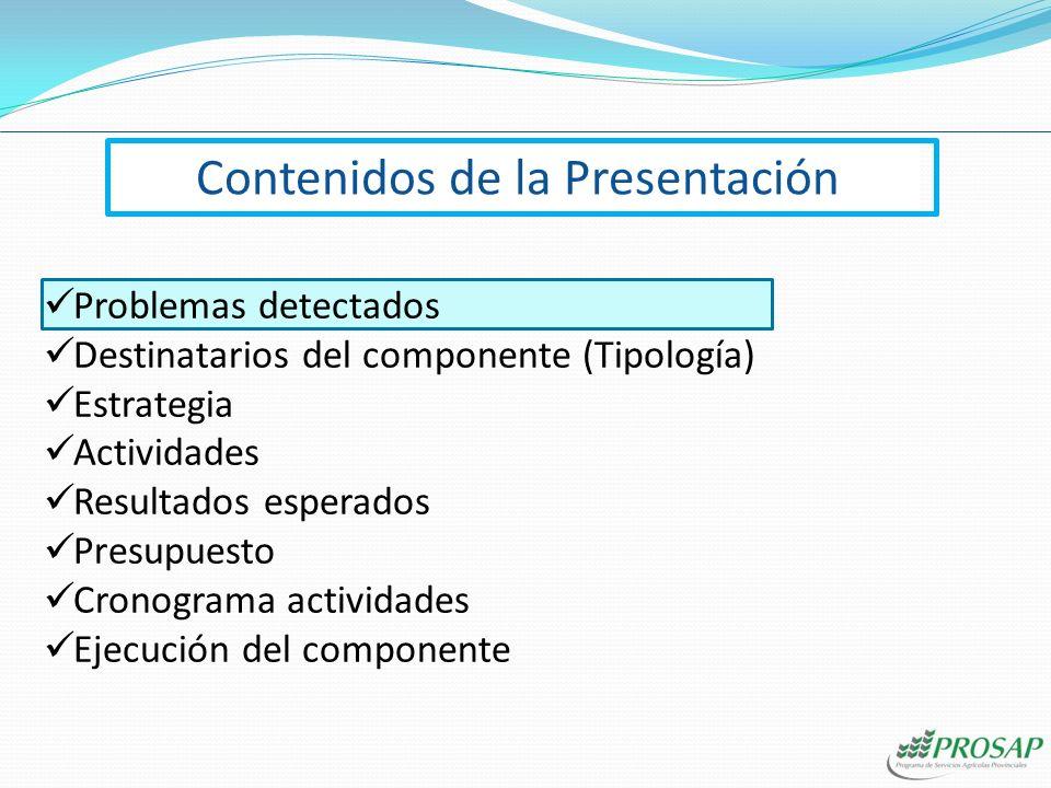 Contenidos de la Presentación Problemas detectados Destinatarios del componente (Tipología) Estrategia Actividades Resultados esperados Presupuesto Cronograma actividades Ejecución del componente