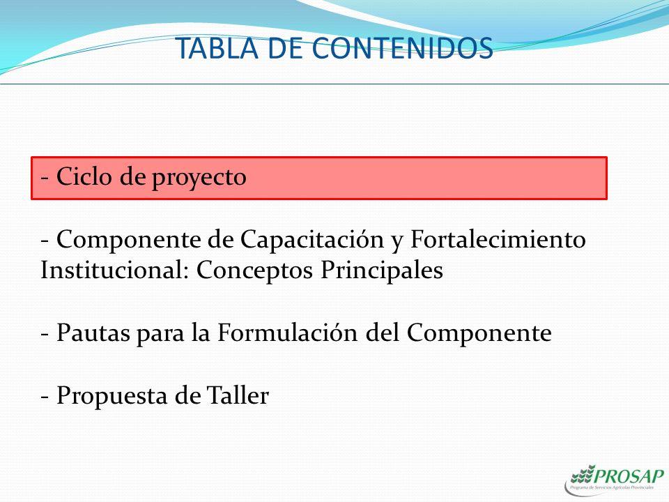 - Ciclo de proyecto - Componente de Capacitación y Fortalecimiento Institucional: Conceptos Principales - Pautas para la Formulación del Componente - Propuesta de Taller TABLA DE CONTENIDOS