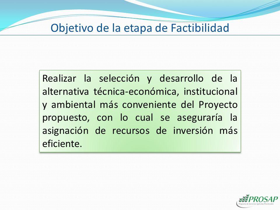 Realizar la selección y desarrollo de la alternativa técnica-económica, institucional y ambiental más conveniente del Proyecto propuesto, con lo cual se aseguraría la asignación de recursos de inversión más eficiente.