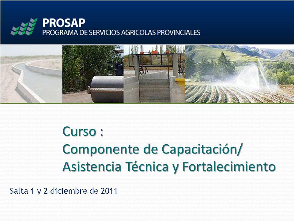 Curso : Componente de Capacitación/ Asistencia Técnica y Fortalecimiento Salta 1 y 2 diciembre de 2011