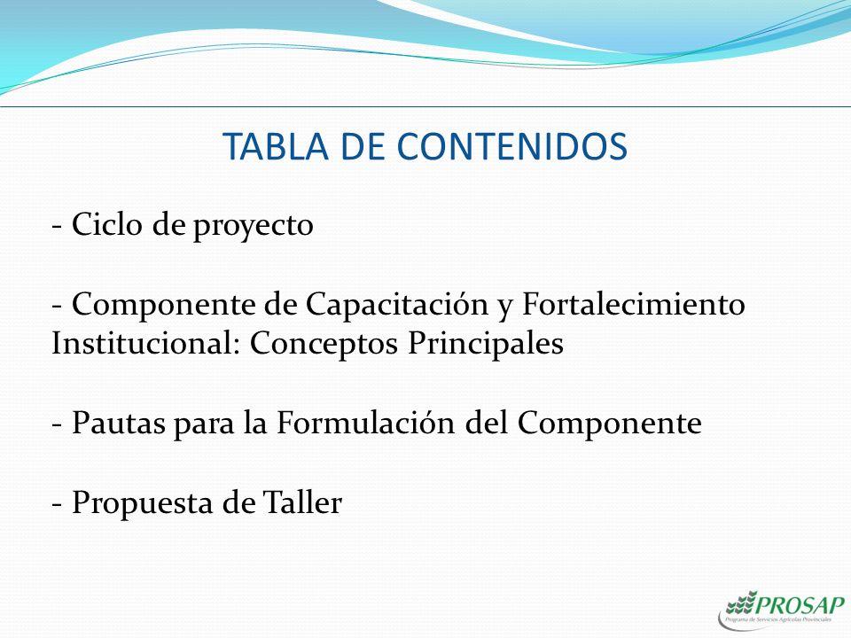 TABLA DE CONTENIDOS - Ciclo de proyecto - Componente de Capacitación y Fortalecimiento Institucional: Conceptos Principales - Pautas para la Formulación del Componente - Propuesta de Taller
