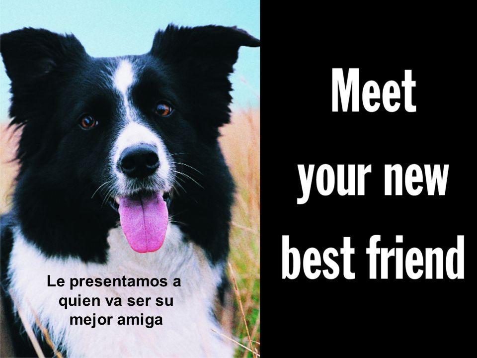 KONICA MINOLTA PRINTING SOLUTIONS U.S.A., Inc. Le presentamos a quien va ser su mejor amiga