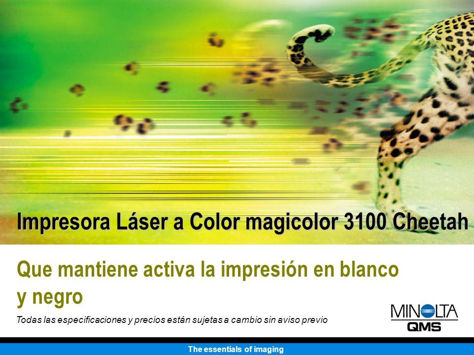 The essentials of imaging Que mantiene activa la impresión en blanco y negro Impresora Láser a Color magicolor 3100 Cheetah Todas las especificaciones