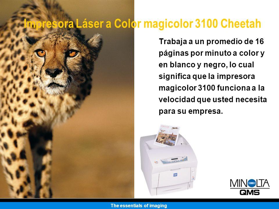 The essentials of imaging Trabaja a un promedio de 16 páginas por minuto a color y en blanco y negro, lo cual significa que la impresora magicolor 310