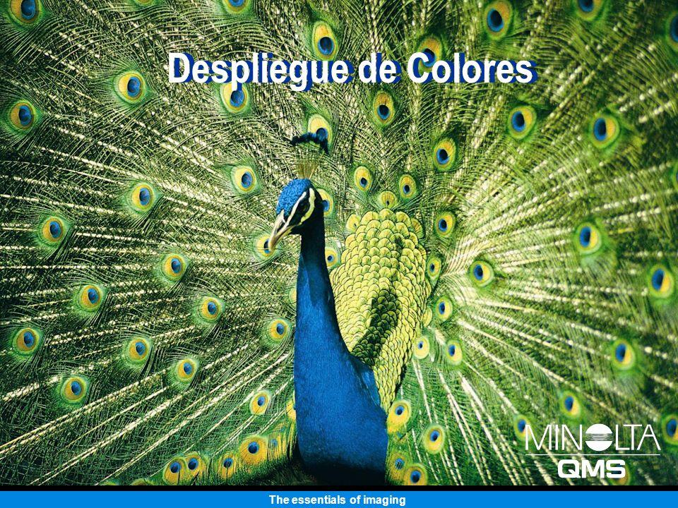 The essentials of imaging Manejo de Papel Soporta una serie de medios de impresión Papel, transparencias, etiquetas, material lustroso, material grueso, sobres Soporta una gama de pesos de papel Bond de 16 a 24 lb.