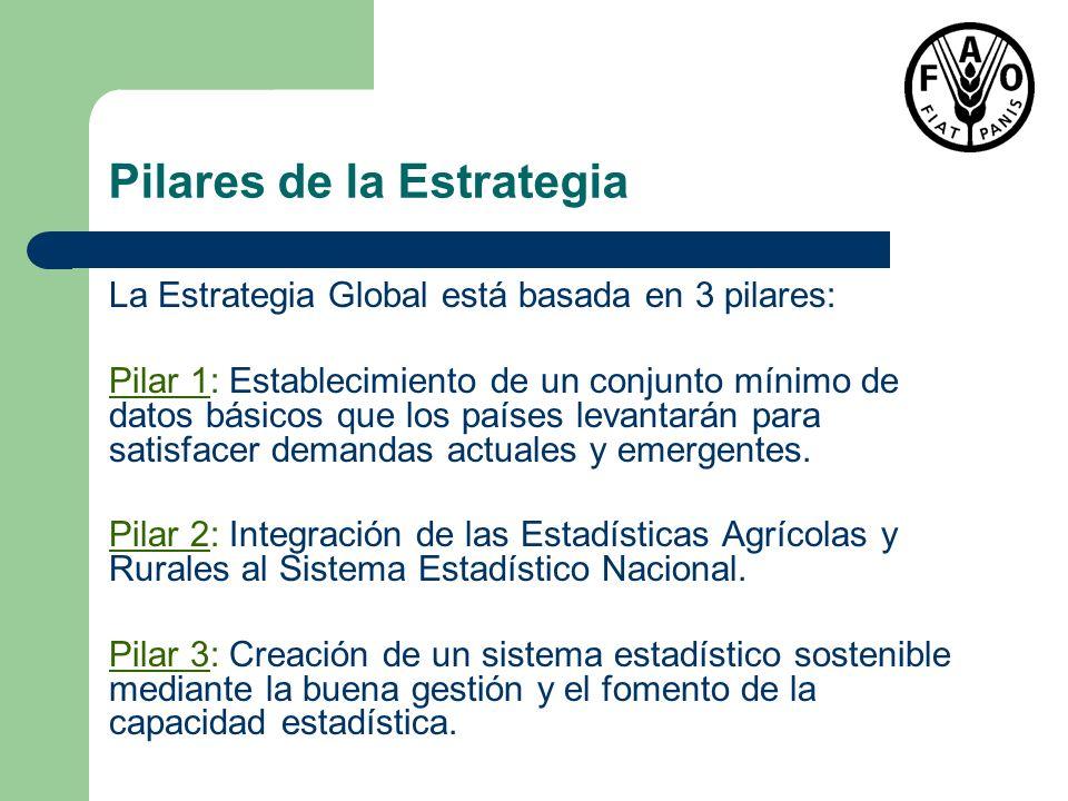 Pilares de la Estrategia La Estrategia Global está basada en 3 pilares: Pilar 1: Establecimiento de un conjunto mínimo de datos básicos que los países