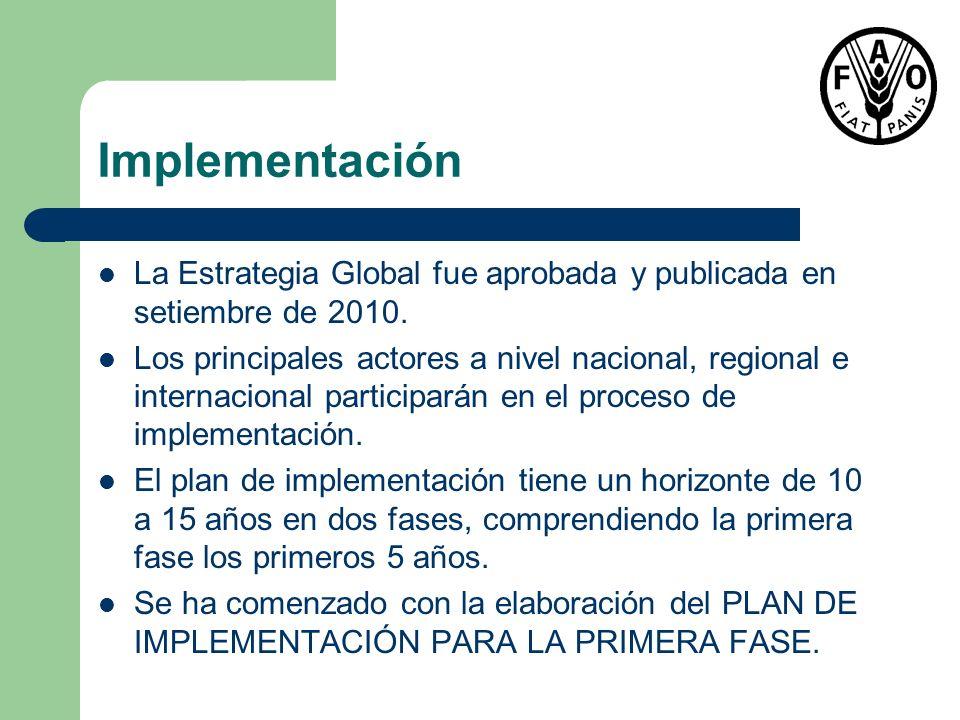 Implementación La Estrategia Global fue aprobada y publicada en setiembre de 2010. Los principales actores a nivel nacional, regional e internacional