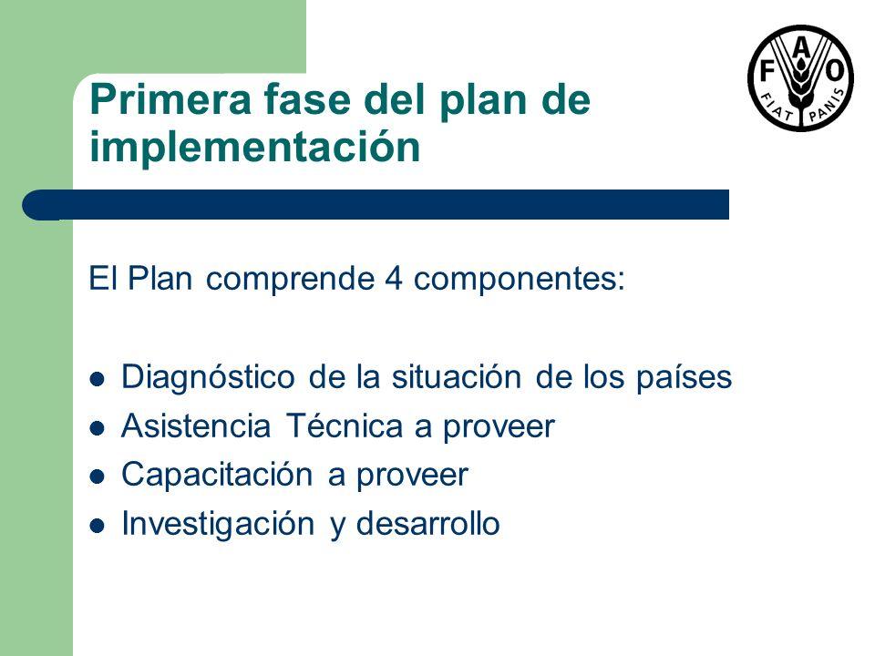 Primera fase del plan de implementación El Plan comprende 4 componentes: Diagnóstico de la situación de los países Asistencia Técnica a proveer Capaci