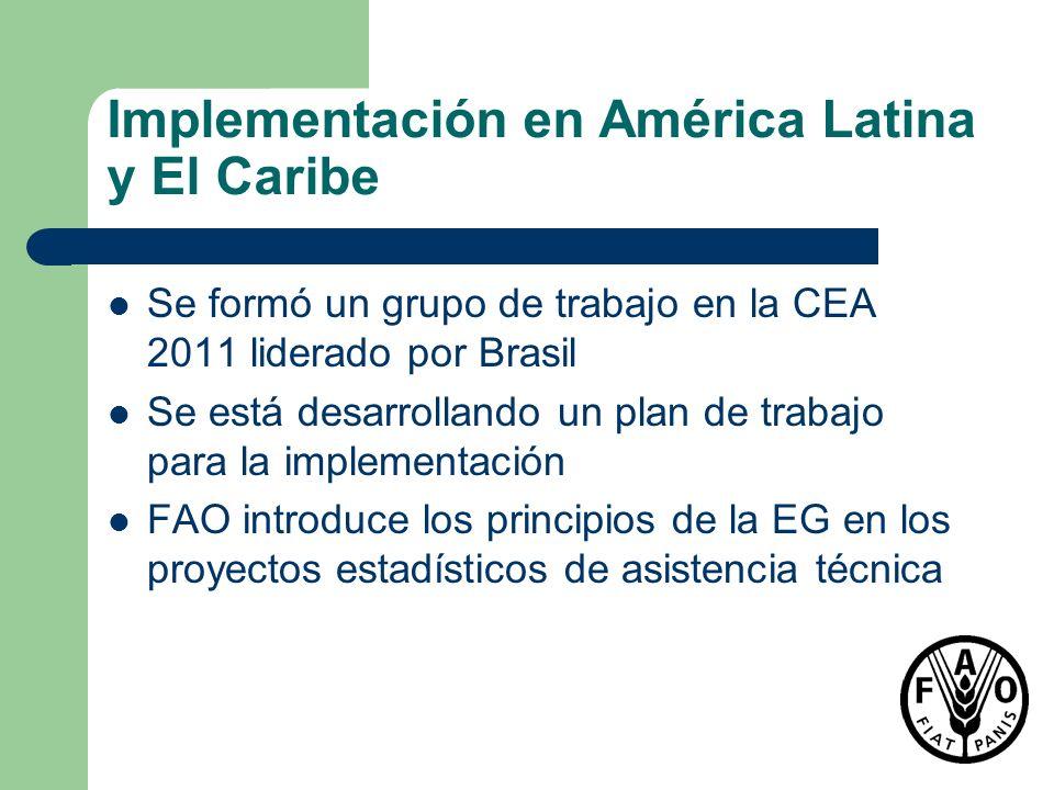 Implementación en América Latina y El Caribe Se formó un grupo de trabajo en la CEA 2011 liderado por Brasil Se está desarrollando un plan de trabajo