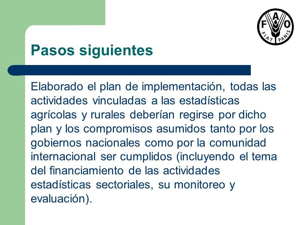 Pasos siguientes Elaborado el plan de implementación, todas las actividades vinculadas a las estadísticas agrícolas y rurales deberían regirse por dic
