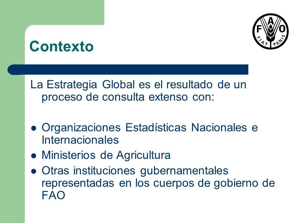 Contexto La Estrategia Global es el resultado de un proceso de consulta extenso con: Organizaciones Estadísticas Nacionales e Internacionales Minister