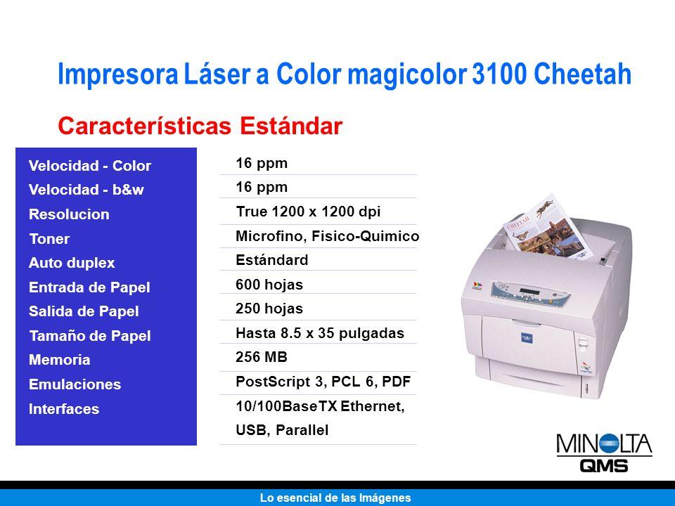 Lo esencial de las Imágenes Impresora Láser a Color magicolor 3100 Cheetah Características Estándar Velocidad - Color Velocidad - b&w Resolucion Toner