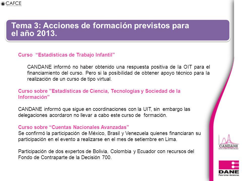 Tema 3: Acciones de formación previstos para el año 2013. Curso Estadísticas de Trabajo Infantil CANDANE informó no haber obtenido una respuesta posit