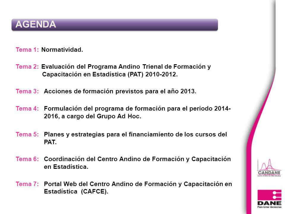 Tema 1: Normatividad. Tema 2: Evaluación del Programa Andino Trienal de Formación y Capacitación en Estadística (PAT) 2010-2012. Tema 3: Acciones de f
