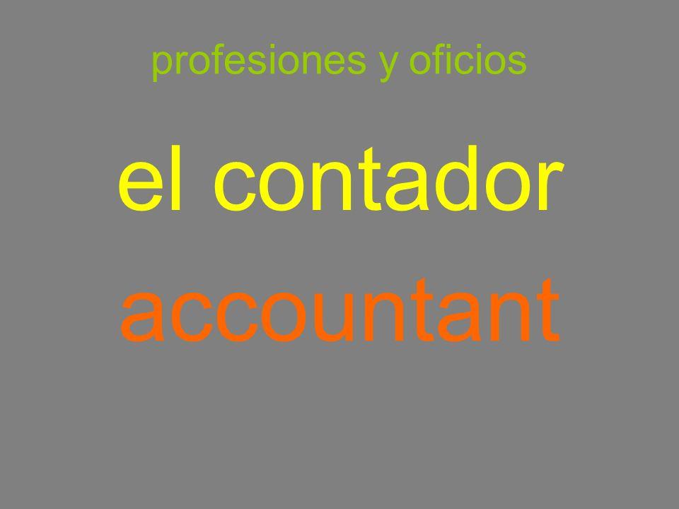 profesiones y oficios el contador accountant
