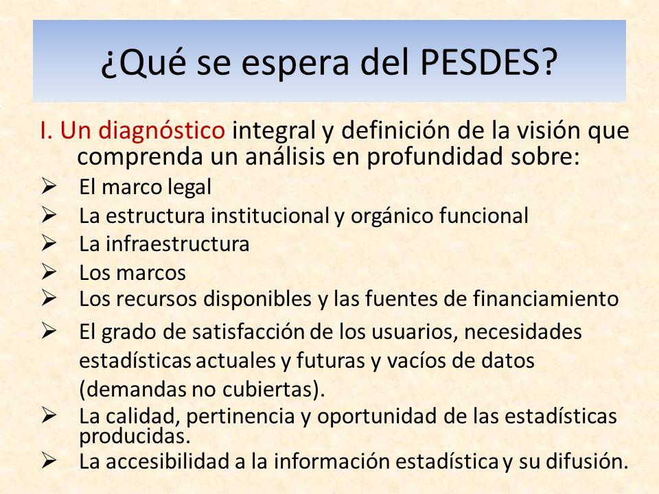 ¿Qué se espera del PESDES. I.