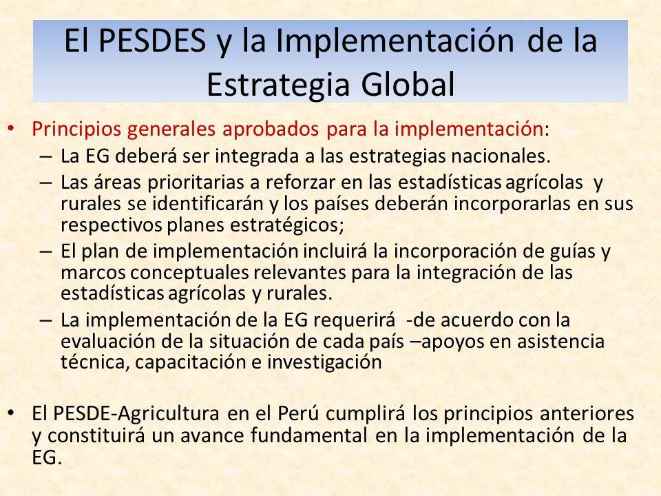 El PESDES y la Implementación de la Estrategia Global Principios generales aprobados para la implementación: – La EG deberá ser integrada a las estrategias nacionales.