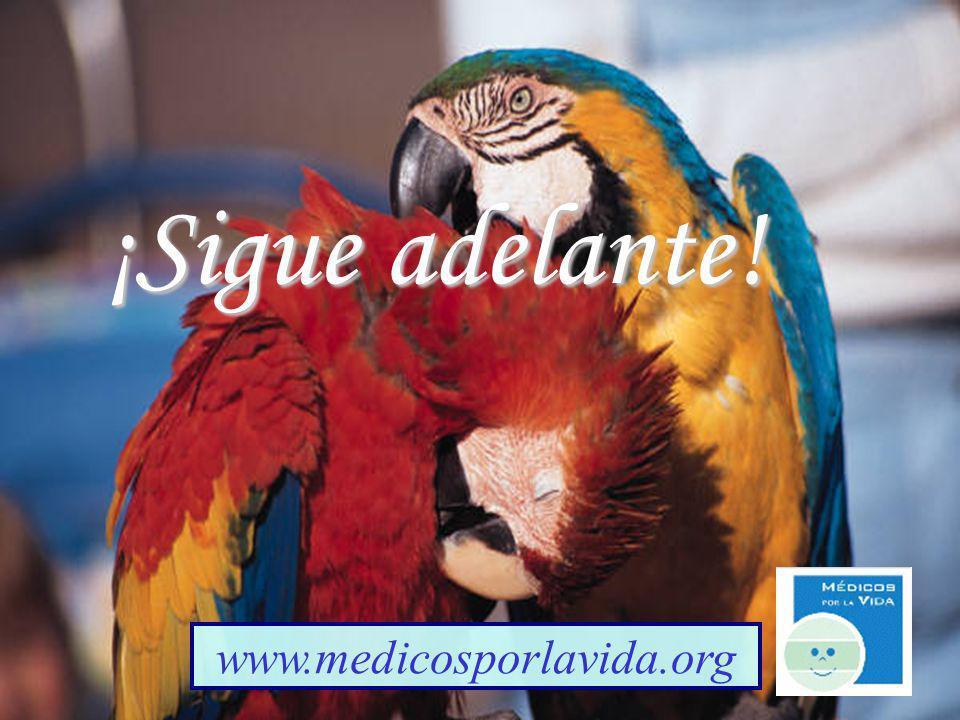 Gianells Creations ¡Sigue adelante! www.medicosporlavida.org