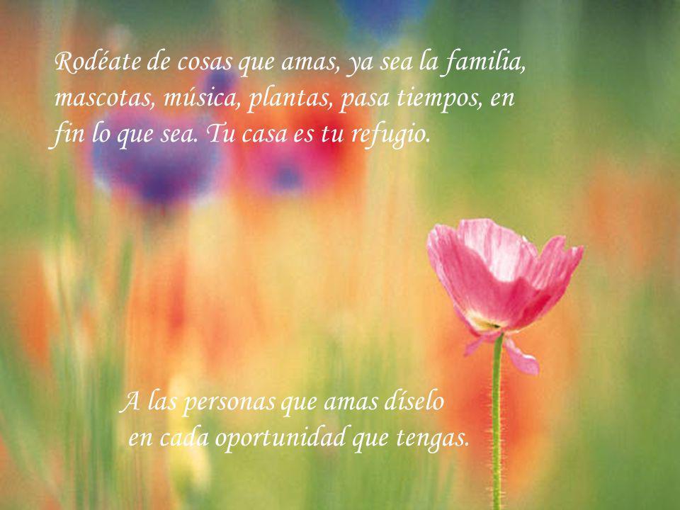 Rodéate de cosas que amas, ya sea la familia, mascotas, música, plantas, pasa tiempos, en fin lo que sea.