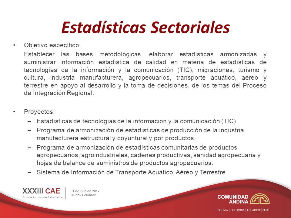 Infraestructura Estadística Objetivo específico: Desarrollar la infraestructura necesaria en los Países Miembros y la SGCAN para el cumplimiento de los objetivos establecidos en los demás programas estadísticos.
