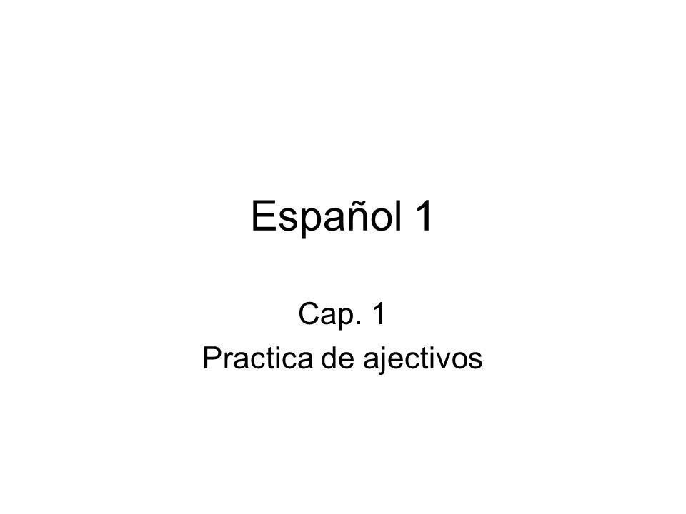 Español 1 Cap. 1 Practica de ajectivos