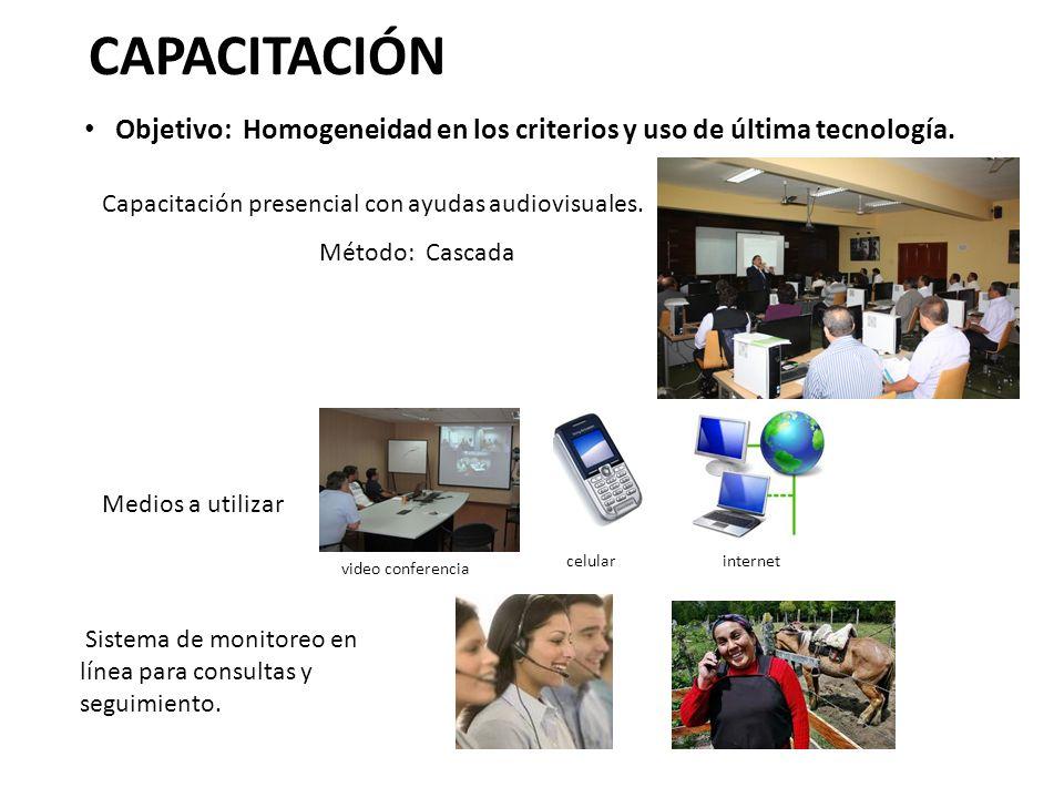 Capacitación presencial con ayudas audiovisuales. Sistema de monitoreo en línea para consultas y seguimiento. CAPACITACIÓN Objetivo: Homogeneidad en l