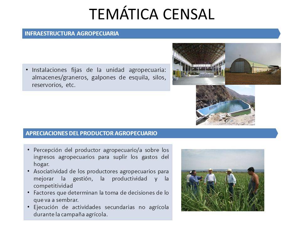 APRECIACIONES DEL PRODUCTOR AGROPECUARIO Percepción del productor agropecuario/a sobre los ingresos agropecuarios para suplir los gastos del hogar. As