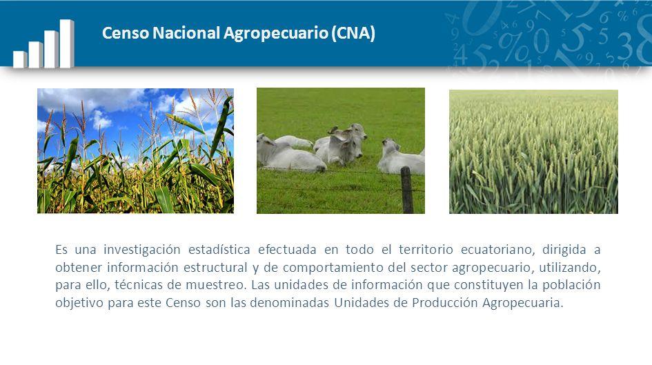 Censo Nacional Agropecuario (CNA) Es una investigación estadística efectuada en todo el territorio ecuatoriano, dirigida a obtener información estruct