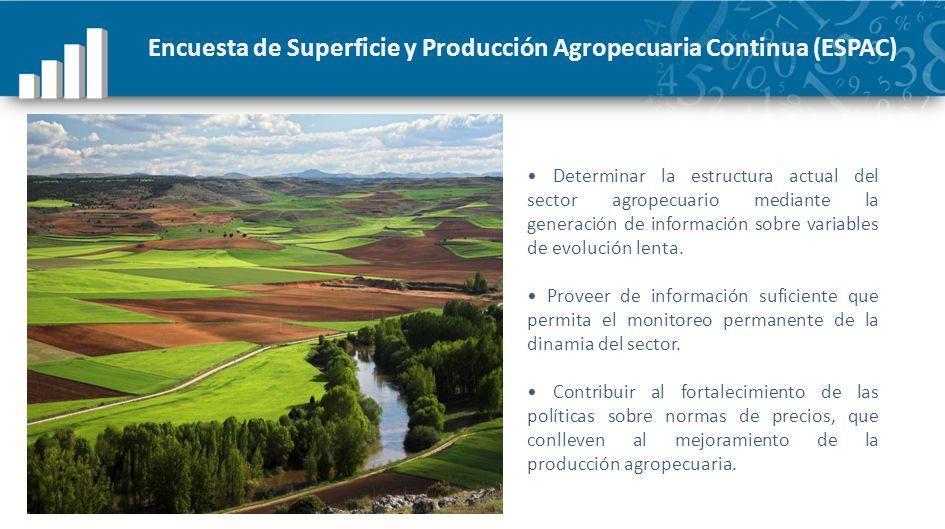 Encuesta de Superficie y Producción Agropecuaria Continua (ESPAC) Determinar la estructura actual del sector agropecuario mediante la generación de in