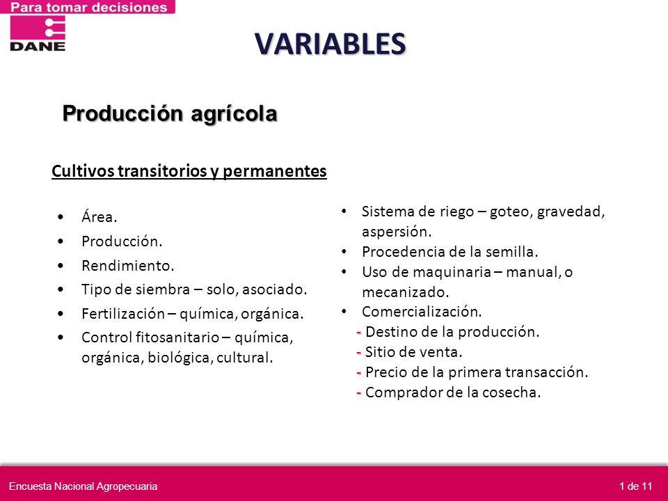 VARIABLES Área. Producción. Rendimiento. Tipo de siembra – solo, asociado. Fertilización – química, orgánica. Control fitosanitario – química, orgánic