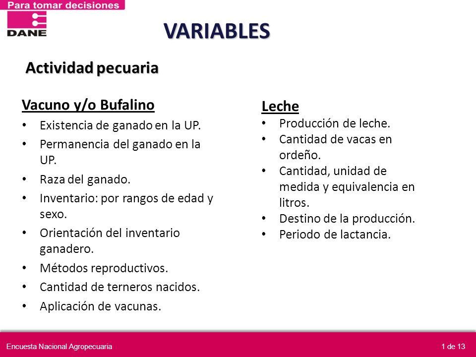 Actividad pecuaria Vacuno y/o Bufalino Existencia de ganado en la UP. Permanencia del ganado en la UP. Raza del ganado. Inventario: por rangos de edad
