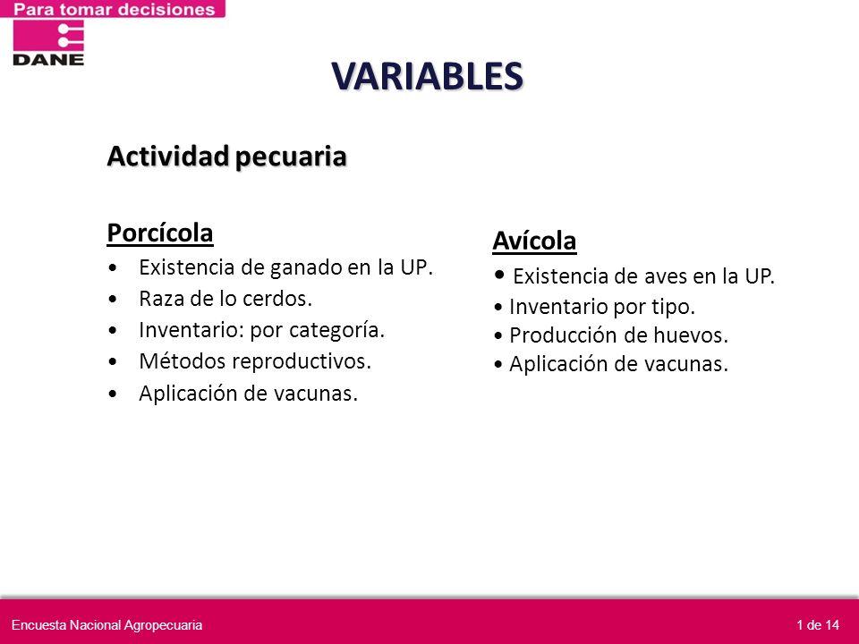 Porcícola Existencia de ganado en la UP. Raza de lo cerdos. Inventario: por categoría. Métodos reproductivos. Aplicación de vacunas. Avícola Existenci