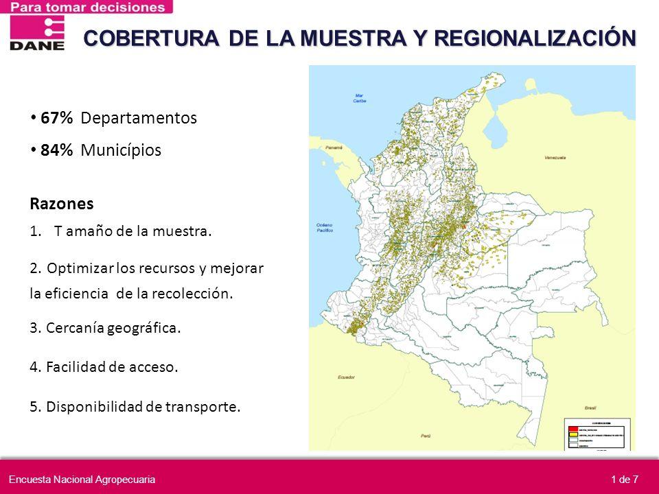 67% Departamentos 84% Municípios COBERTURA DE LA MUESTRA Y REGIONALIZACIÓN Razones 1.T amaño de la muestra. 2. Optimizar los recursos y mejorar la efi