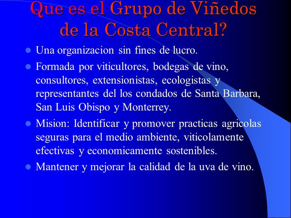 Programa La Historia y Desarrollo del Grupo de Viñedos de la Costa Central.