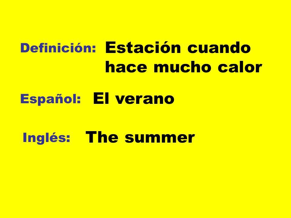 Definición: Español: Inglés: La chaqueta El abrigo The coat