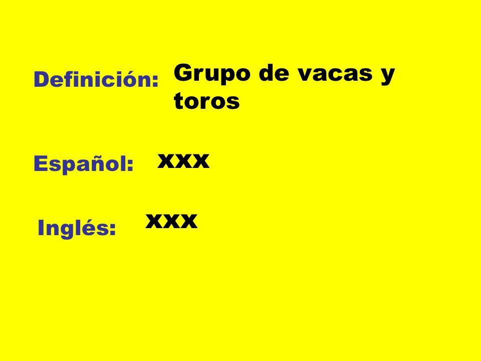 Definición: Español: Inglés: Grupo de vacas y toros xxx