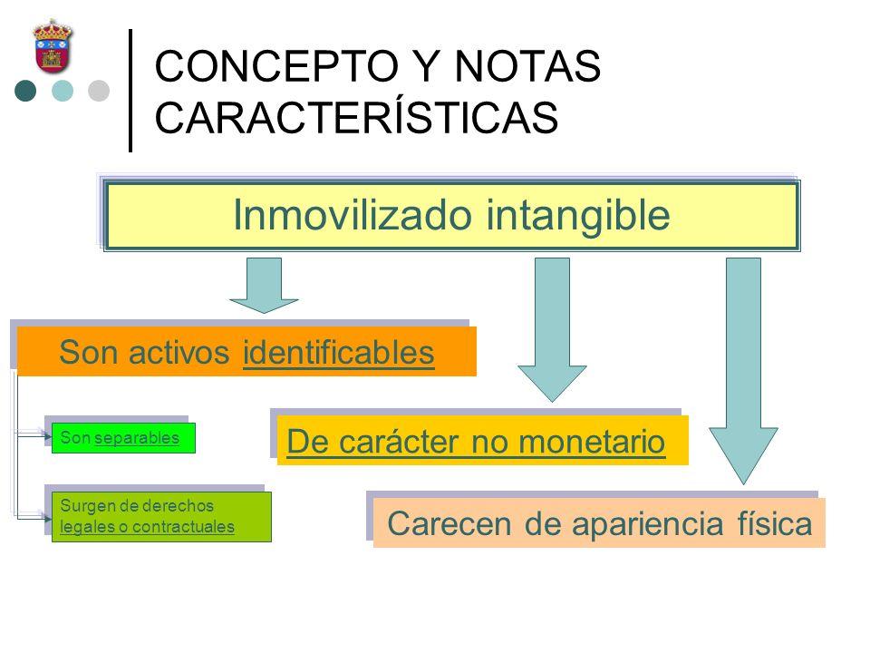 CONCEPTO Y NOTAS CARACTERÍSTICAS Son activos identificables De carácter no monetario Carecen de apariencia física Inmovilizado intangible Son separabl