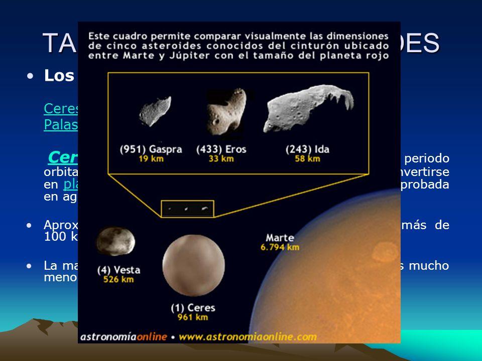 TAMAÑO DE LOS ASTEROIDES Los asteroides de mayor tamaño son : CeresCeres, con un diámetro de unos 1.030 km PalasPalas y Vesta, con diámetros de unos 4