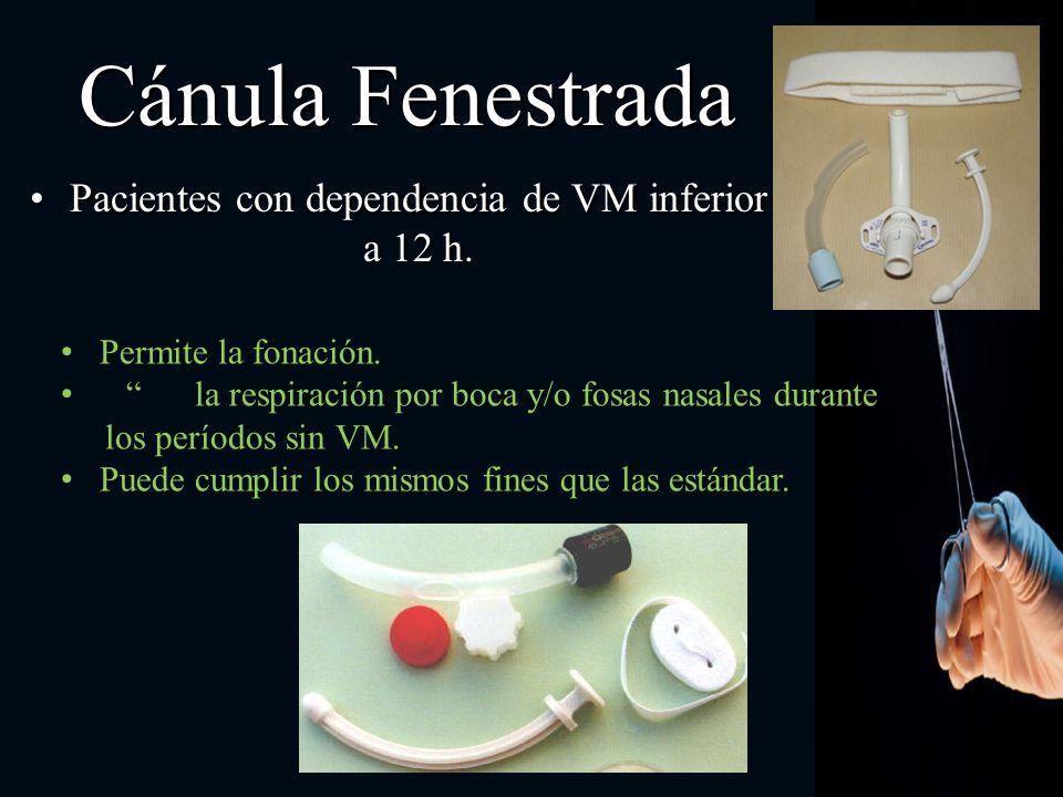 Cánula Fenestrada Pacientes con dependencia de VM inferior a 12 h. Permite la fonación. la respiración por boca y/o fosas nasales durante los períodos