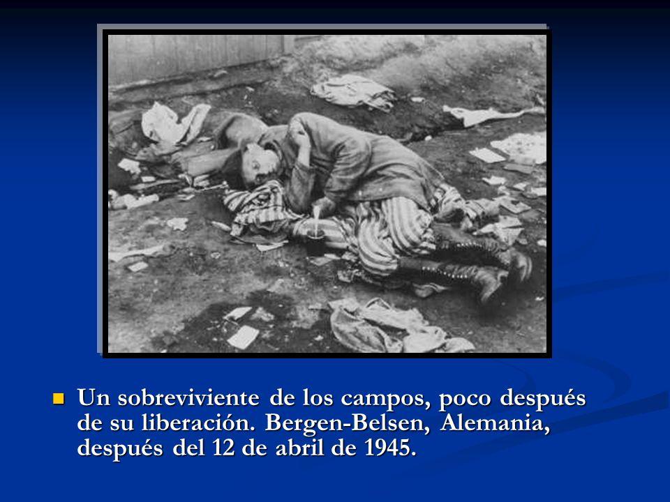 Un sobreviviente de los campos, poco después de su liberación. Bergen-Belsen, Alemania, después del 12 de abril de 1945. Un sobreviviente de los campo
