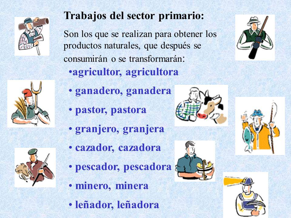 Trabajos del sector primario: Son los que se realizan para obtener los productos naturales, que después se consumirán o se transformarán : agricultor,