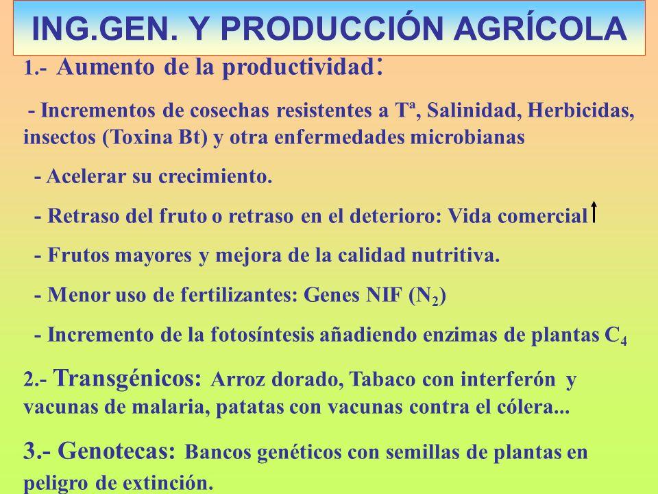 1.- Aumento de la productividad : - Incrementos de cosechas resistentes a Tª, Salinidad, Herbicidas, insectos (Toxina Bt) y otra enfermedades microbia